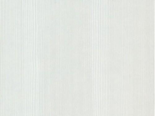 Сосна Карелия светлая